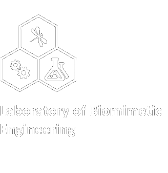 Laboratory of Biomimetic Engineering